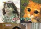 '슈돌' 박주호 딸 나은, 등장만으로 시청률 대폭 상승…동시간대 1위