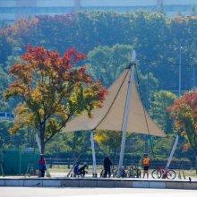 [포토]알록달록 가을의 색