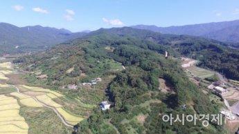 광양시, 세계 최고 수준의 백계산동백림 조성 기본계획 수립한다