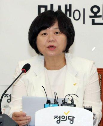 """이정미 """"부동산값 폭등, '종부세' 찔끔 올린 탓"""""""