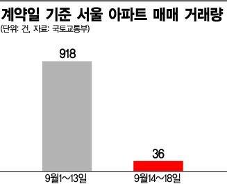 예고된 거래절벽…9·13 대책 후 서울 아파트 거래 '뚝'