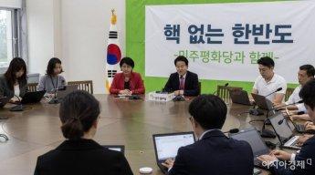 [포토] 정동영 대표, 평양방북 결과 설명