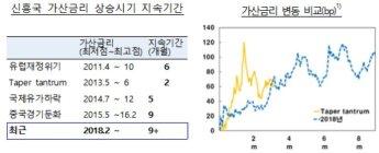 """한은 """"신흥국 금융불안, 최장기 지속…반복 가능성도"""""""