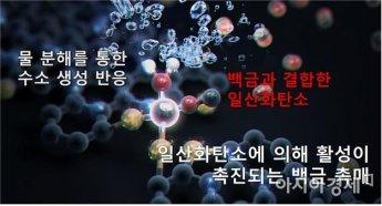지스트 연구팀, 일산화탄소로 백금 촉매 활성 향상 기술 개발