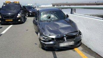 피해자는 전신마비인데…공항서 광란의 질주 BMW운전자 '금고형'