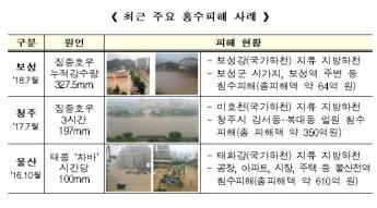 홍수 대응력 높인다…정부, 국가하천 지정요건 확대