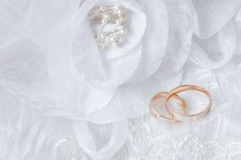 행복한 결혼생활, 유전자가 결정한다?