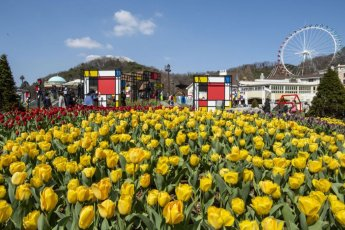 [조용준의 여행만리]봄날, 추상花를 만나다