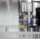 "jtbc 뉴스룸, 정봉주 ""120억 횡령 다스 사건의 핵폭탄"""