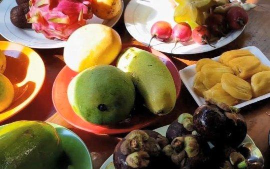 열대과일은 냉장고를 싫어해?