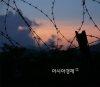 육군 50사단서 수류탄 사고… 1명 사망·2명 사상
