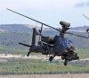 내달 국군의날 행사때 아파치헬기 비행