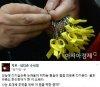 """""""朴대통령, 세월호 7시간 행적 정확히 기억 못한다"""""""