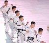 평창 동계올림픽, 북한 태권도 시범단의 공연
