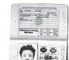김정일·김정은, 과거 브라질 여권 발급…\