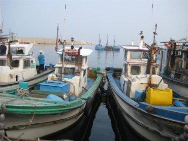 맛있는 감성여행]동해바다 참가자미 낚시