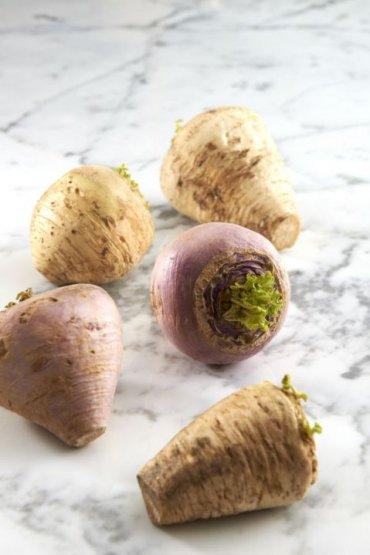[슈퍼마켓 돋보기] 밥상에 오르기보다는 버려지기 쉬웠던 '배추뿌리'