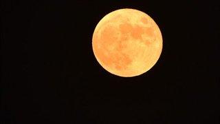 달을 발견한 남자, 김소월