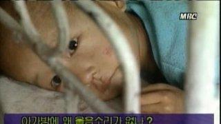 [기후와 혁명]②北정권 최대 위기였던 '고난의 행군'도 엘니뇨 후폭풍