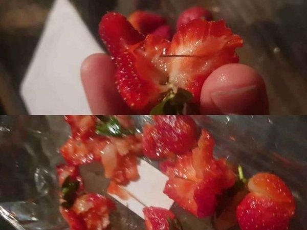 호주發 '바늘 딸기'에 전 세계 확산되는 묻지마 테러 공포