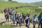 DMZ 종주길 생긴다…문체부, 평화관광거점 육성 TF 발족