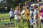 [과학을 읽다]쿠바의 '도시농업'을 만나다