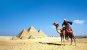 [金요일에 보는 경제사]피라미드 건축에 동원된 인원은 몇 명일까?