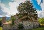 지붕 뚫은 소나무, 그리스 교회의 이색풍경