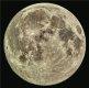 [한가위 알쓸신잡]추석 당일보다 둥근 보름달, 오늘 뜬다