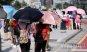 [포토] 불볕더위에 우산 쓴 관광객들