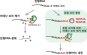국내연구진, 유전자 조절 실마리 RNA 보호하는 '혼합 꼬리' 발견