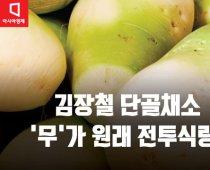 김장철 단골채소 '무'는 원래 전투식량이었다