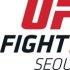 """김하나, 새 UFC 옥타곤 걸 발탁 """"아리아니와의 만남 기대"""""""