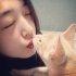 고양이 당신을 사랑할 때 하는 행동 10가지 '반려묘와 교감해보세요'