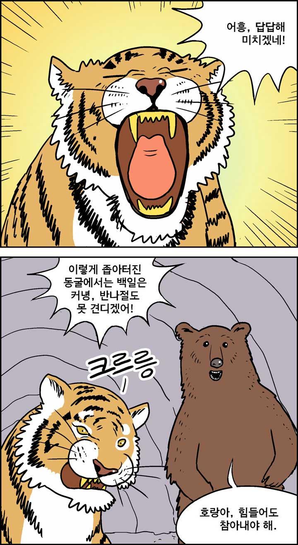 호랑이와 곰_0