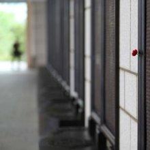 [포토]유엔군 참전용사 추모비에 꽂혀 있는 조화