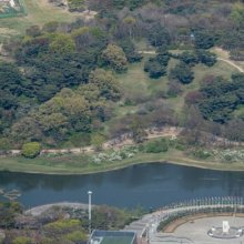 [포토]녹음 우거진 올림픽공원
