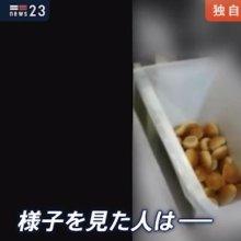 도쿄올림픽 자원봉사자 도시락 매일 수천 개씩 버려져