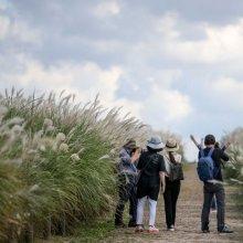 [포토]연휴 막바지 하늘공원 찾은 시민들