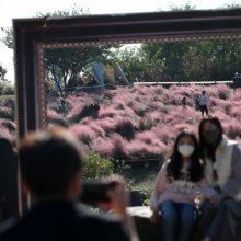 [포토] 가을 담는 시민들