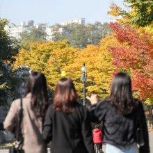 [포토]가을 물든 올림픽공원