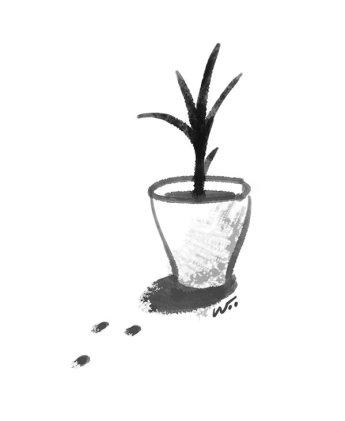 [오후 한 詩]화분에 물 주는 일/문효치