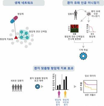 인공지능으로 환자 맞춤형 항암제 찾는다