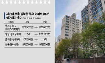 84㎡ 마포 20억·도봉 10억 육박… 다시 불붙는 서울 집값