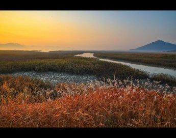 관광공사, 순천만습지 등 3곳 열린관광지 '우수사례' 선정