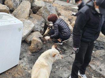 """""""청소하는 사람이 혹시?""""…한정애 환경부 장관, 이용녀씨 동물보호소 몰래 찾아"""