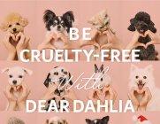 디어달리아, 동물사랑 실천하는 참여형 기부 '하트포포 캠페인' 연장
