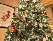지속 가능한 GREEN 크리스마스