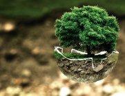 지구 살리기에 진심인 유통가와 소비자들