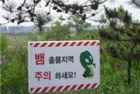 """[권한나의 캐디편지] """"악, 뱀이다~"""""""